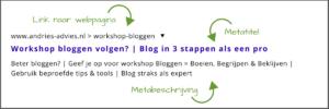 Verleidelijke metatags schrijven - voorbeeld vraag en antwoord